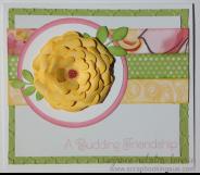 A budding friendship 3a.JPG
