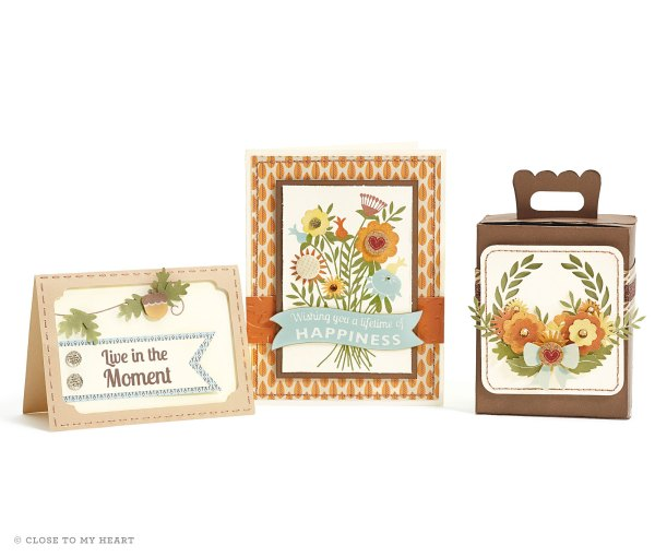 14-ai-lifetime-of-happines-cards-cricut-box (1)