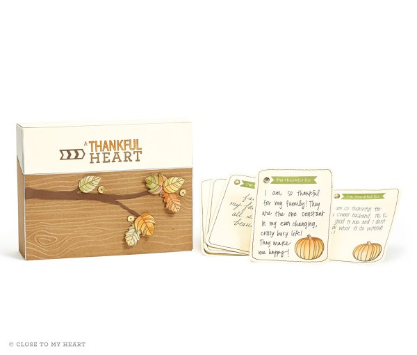 14-ai-thankful-heart-gratitude-card-box-and-cards