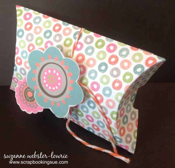 Lollydoodle pillow box 1a.jpg